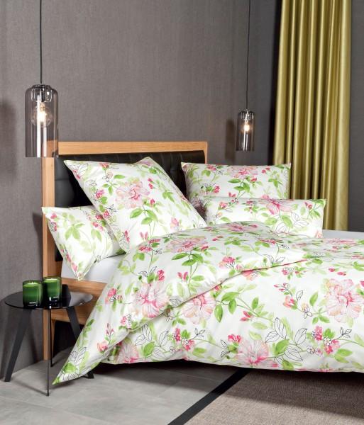 Janine Interlock-Jersey Bettwäsche CARMEN 53082 magenta grün